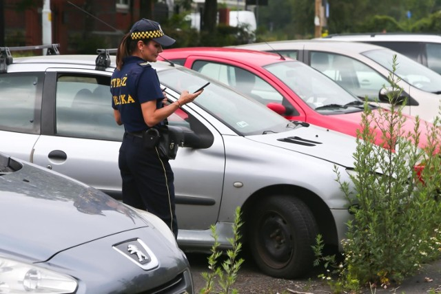 Straż miejska w Toruniu tylko w czerwcu 2021 interweniowała ponad 1,5 tys. razy w różnych sprawach