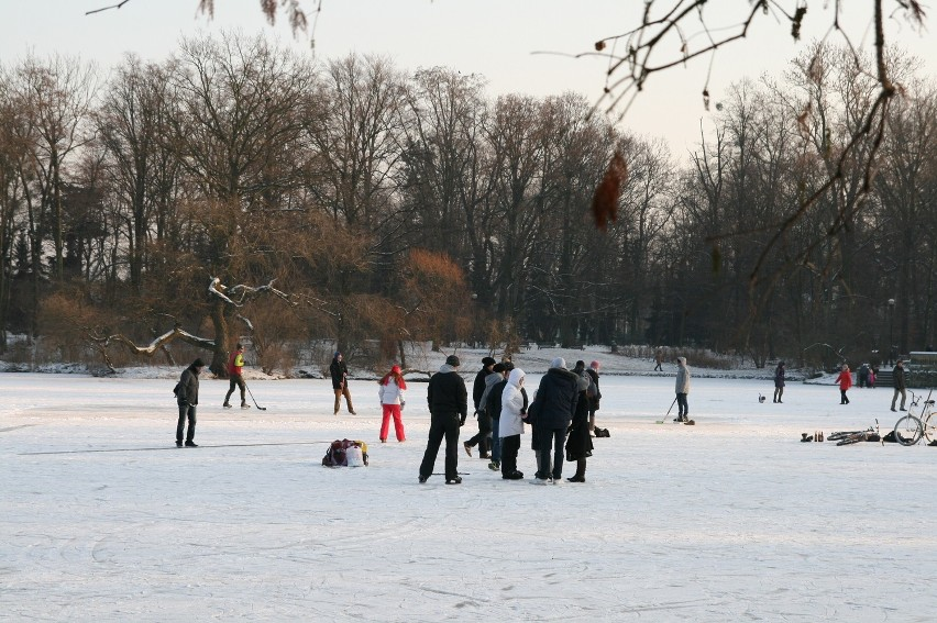 Zima w Parku Południowym (zdjęcia, PROGNOZA POGODY)