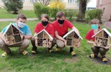 Harcerze z Radomska wykonali budki dla owadów. Tzw. hotele dla zapylaczy już wiszą w ogrodach