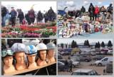 Kolorowo na Pchlim Targu - kwiaty i sadzonki, długie kolejki do bramek [25 kwietnia 2021 - zdjęcia, ceny]