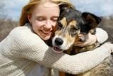 Koronawirus w USA: Schroniska dla zwierząt pustoszeją