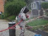 Strażacy usuwali gniazda szerszeni i os