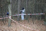 Zabójstwo w parku Na Zdrowiu. Sprawę przeniesiono do Prokuratury Regionalnej! Zajął się nią wybitny specjalista od zagadek kryminalnych