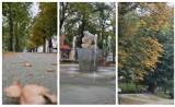Rawicz. Na Plantach Jana Pawła II zrobiło się już jesiennie. Liście na drzewach w jesiennych barwach [ZDJĘCIA]