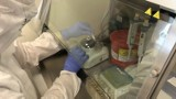 Koronawirus w powiecie szczecineckim. Aktualny raport z 10 października