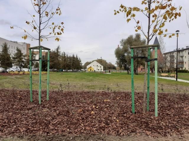 Zielony Skwer Lipska - Mały Płaszów w Krakowie