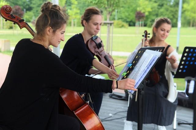 Koncerty w parku Kameralna Reda