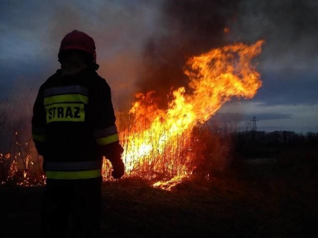 Pomimo wielokrotnych apeli Sądecczyzna co roku płonie. Każdy pożar pociąga za sobą nie tylko koszty finansowe, ale także ryzyko utraty zdrowia i życia i to zarówno podpalacza, jak i osób gaszących ogień