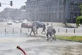 Tropikalne upały w Warszawie. Miasto uruchomiło kurtyny wodne i rozdaje warszawiakom kranówkę