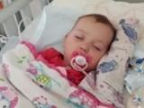 Szamotuły. 2-letnia Amelka potrzebuje pomocy żeby żyć!