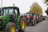 """Rolnicy Gniezno. Czy to nie koniec protestów? Będzie nowa """"piątka dla zwierząt""""?"""