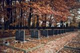 """Cmentarz Powstańców Warszawy. Jednego dnia pochowano tu 15 tys. osób. """"To był największy pogrzeb w Polsce"""""""