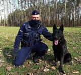 Policjanci ze Strzelec Opolskich mają nowego psa tropiącego