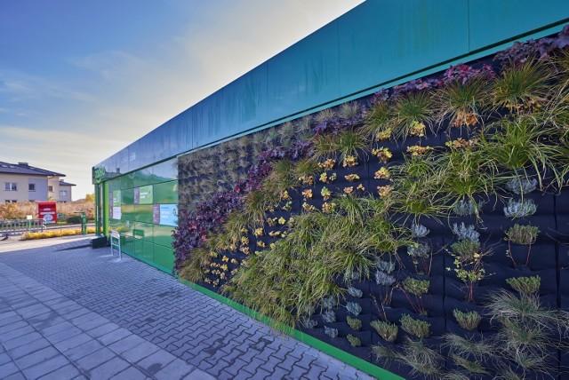 Новая Eco-Żabka открылась в Варшаве: работает на возобновляемых источниках энергии