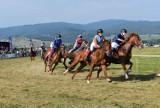 Piknik Jeździecki w Nowy Targu. Byli ułani, kłusaki, konie półkrwi i wyścigi