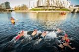 Ice Swimming Bydgoszcz Festival 2019. Bydgoszczanie pływali w lodowatej Brdzie [zdjęcia]