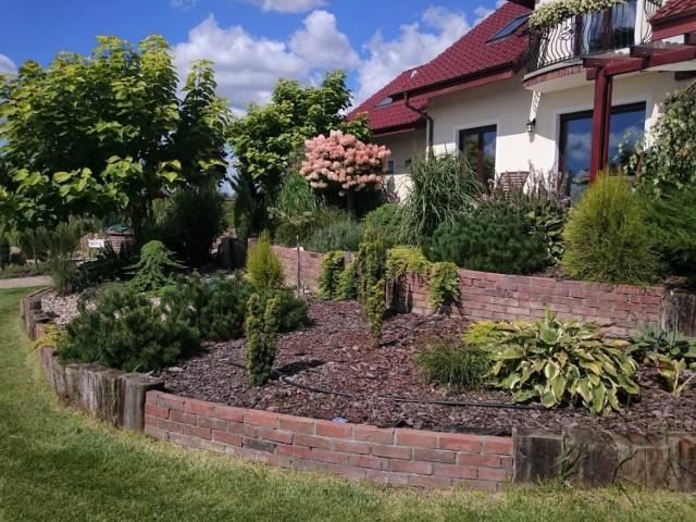 Ten ogród jury uznało za najpiękniejszy w powiecie bydgoskim