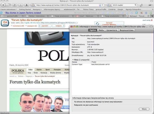 I sposób prezentacji materiału ze strony www.polskatimes.pl