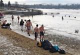 Bagry skute lodem, ale krakowskie morsy nie odpuszczają. Kaczki czekają na... poczęstunek ZDJĘCIA