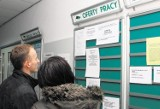 Gostyń. Aktualne oferty pracy w Powiatowym Urzędzie Pracy w Gostyniu. TOP 38 ofert: w tych zawodach znajdziesz pracę od zaraz[4 lutego 2021]