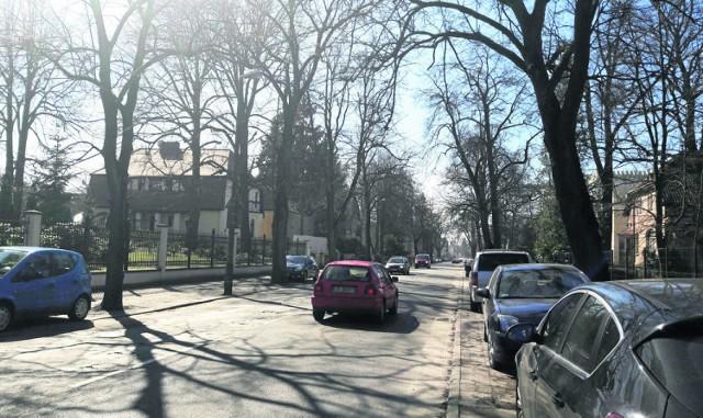 Wielu czytelników niepokoi los drzew przy ulicy. Oby nie zostały niepotrzebnie wycięte