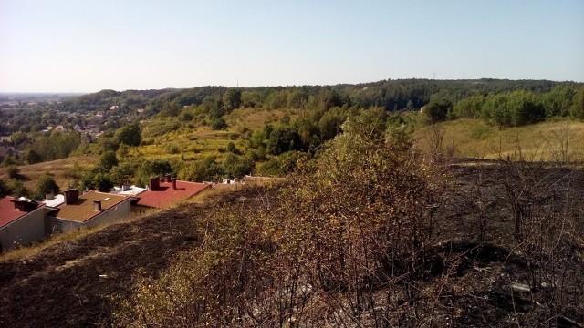 Gorzowskie Murawy nie tylko bywają zaśmiecane. Wiosną dochodzi tu do pożarów traw.