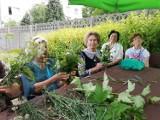 Wakacyjne zajęcia w Dziennym Domu Senior + w Ostrowie Wielkopolskim