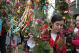 Ogromne palmy staną do konkursu w Gilowicach, a także innych miejscowościach powiatu żywieckiego