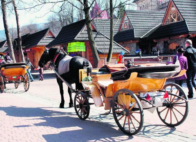 Według regulaminu dla fiakrów, koń na postoju nie powinien pozostawać bez opieki