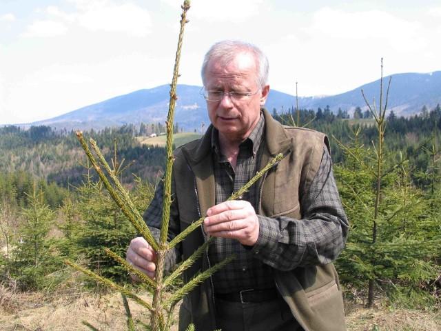 Dyrektor Kazimierz Szabla poparł akcję Moje silne drzewo