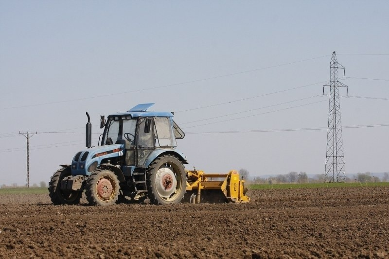 Rolnicy potrzebują pomocy państwa, aby móc obsiać ponownie pola, które zimą wymarzły.