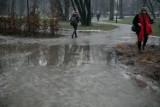 Kraków. Park Krakowski do poprawki. Możliwe wady ukryte