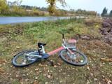 Gniezno. Rower miejski porzucony na poboczu drogi z Gniezna do Gębarzewa