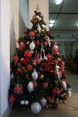 Bardo: Cepeliada Bożonarodzeniowa