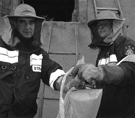 Strażak Roman Sikora i ogniomistrz Mirosław Staniek ubrani jak do pożaru, właśnie usunęli gniazdo szerszeni.