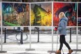 Białystok światłem malowany. W centrum miasta pojawiły się niezwykłe fotografie (zdjęcia)