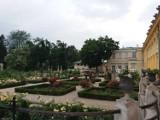 Sekretny, tajemniczy ogród w Wilanowie, czyli neorenesansowy ogród różany z XIX wieku