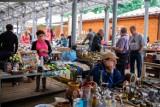Tarnów. Bazar na Starówce i jego rozmaitości.To pierwszy taki kiermasz na tarnowskim Burku podczas tegorocznych wakacji [ZDJĘCIA]
