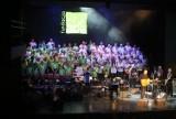 Fundacja Iskierka: koncert w Teatrze Rozrywki w Chorzowie [ZDJĘCIA, WIDEO]