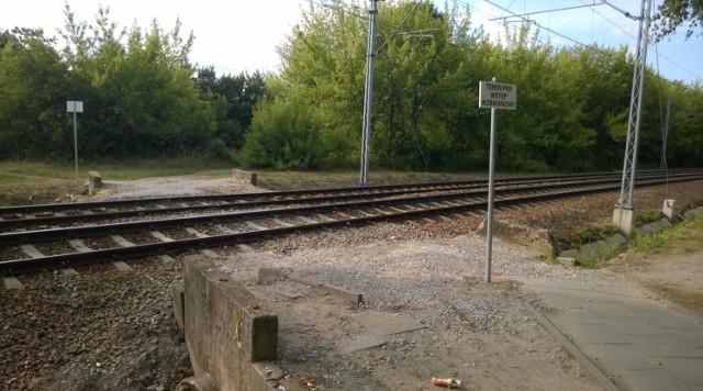 PKP SA ogłosiła przetarg na sprzedaż złomu pochodzącego z likwidacji nieczynnych torów linii kolejowej nr 209 na 50-kilometrowym odcinku Brodnica – Kowalewo Pomorskie przez Golub-Dobrzyń.