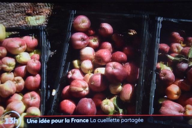 Kadr z dziennika telewizyjnego France 2 z dnia 16 września 2021