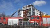 Pożar na tarasie bloku przy ul. Pienistej w Łodzi. Co było przyczyną pożaru przy Pienistej?  23.03.2021