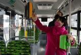 Autobus elektryczny na liniach MZK. Kto się chce przejechać?