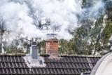 Straż Miejska w Gdańsku walczy z trucicielami i ze smogiem. Sypią się mandaty