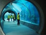 Wszystkie zbiorniki są już zarybione w Orientarium w łódzkim zoo