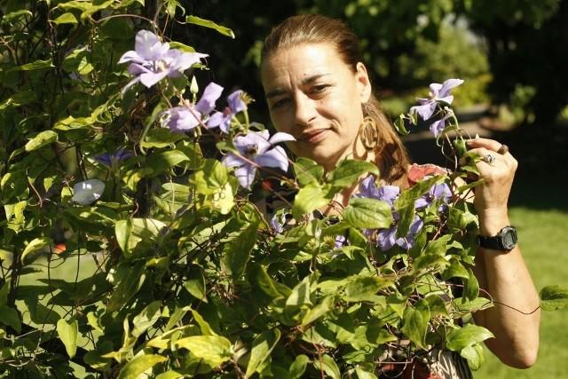 Pani Jolanta jest dumna z kolekcji pnączy, które są jej oczkiem w głowie