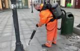 Wyplute gumy do żucia niszczą bruk i chodniki w Śródmieściu w Bydgoszczy. Drogowcy walczą z tą plagą specjalną maszyną