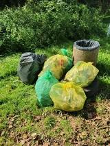 Uczniowie i mieszkańcy Jastrzębia posprzątali miasto. Dwa tysiące osób oczyściło najbardziej zaśmiecone tereny. Zebrali dwie tony śmieci