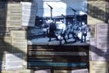 Losy więźniów z obozu Stutthof w Sztutowie - przedstawiamy najnowsze wystawy muzeum.