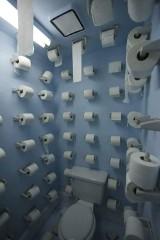 40 najdziwniejszych toalet na świecie [GALERIA ZDJĘĆ]